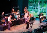 The Manfreds -