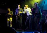 Live – The Manfreds -
